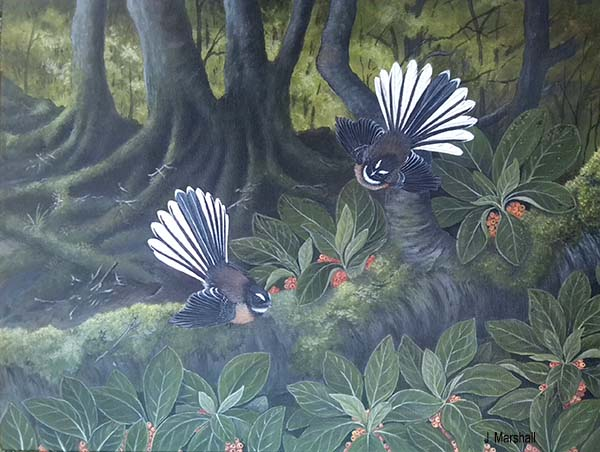 Gouache, Watercolour and Acrylic artworks of New Zealand native